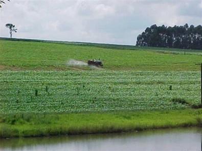 Modelo matemático para diluir agrotóxicos diminui risco de contaminação ambiental