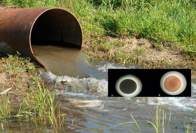 Bactérias ajudam a tratar água utilizada por refinarias de petróleo