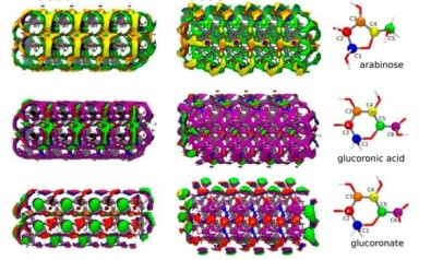 Molecular modeling extends knowledge of biopolymeric materials