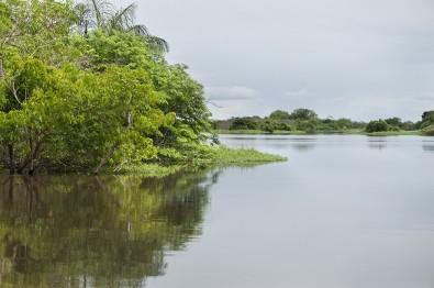 Pesquisa avalia impactos dos extremos climáticos na Amazônia