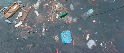 Degradação ambiental ameaça a saúde humana