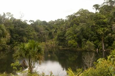 Cientistas do IPBES preparam diagnóstico sobre biodiversidade brasileira