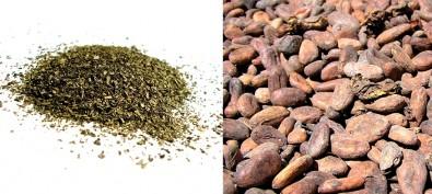 El té verde y el cacao protegen contra las complicaciones que causa la diabetes