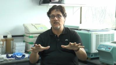 Epidemia de Zika agiliza mecanismos de financiamento de pesquisa no país
