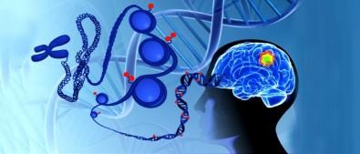 Rumbo a la personalización de los tratamientos de tumores del sistema nervioso