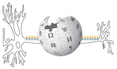 Centro de Pesquisa em Neuromatemática colabora com Wikipédia para difusão científica