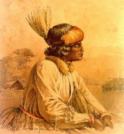 A política indigenista e o malogrado projeto de aldeamento indígena do século XIX