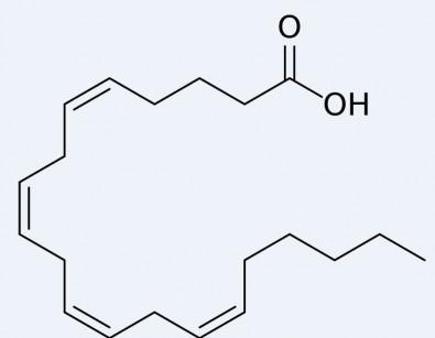 Pós-Doutorado em Farmácia na USP com bolsa da FAPESP