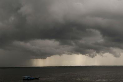 Como são produzidas as partículas que alimentam as nuvens da Amazônia