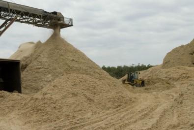 FAPESP e BBSRC aplicam R$ 19 milhões em pesquisas sobre biocombustíveis avançados