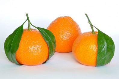 La naranja puede volverse genéticamente resistente a las plagas agrícolas