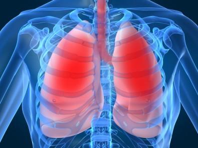 Pós-Doutorado em Fisiologia Respiratória com Bolsa da FAPESP