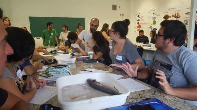Workshop ensina a comunicar e a ensinar melhor sobre mudanças climáticas e oceanos