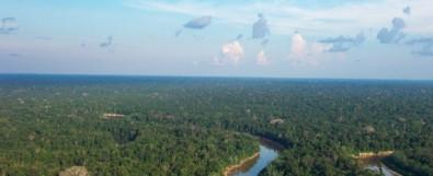 Estudo reforça importância da Amazônia na regulação da química atmosférica