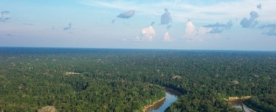 La importancia de la Amazonia en la regulación de la química atmosférica