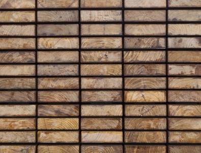 Identificação de madeiras