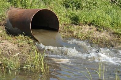Investigan la presencia de contaminantes en el agua