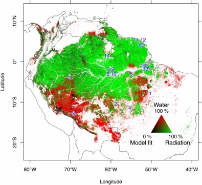 Solar radiation is more important than rainfall to Amazon Rainforest leaf production