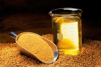 Estudo brasileiro poderá tornar óleo de soja mais saudável