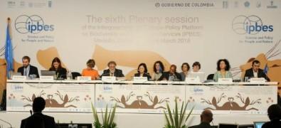 La pérdida de biodiversidad amenaza a las generaciones actuales y futuras