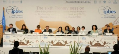 Loss of biodiversity endangers wellbeing of present and future generations