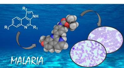 Nova molécula é candidata para tratamento contra a malária