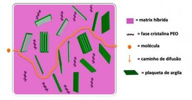 Novo material permite a liberação controlada de medicamentos