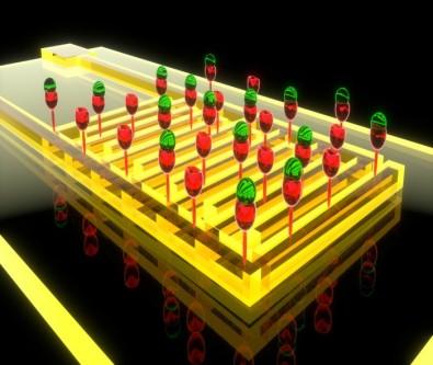 Novo biossensor detecta câncer de pâncreas com maior precisão