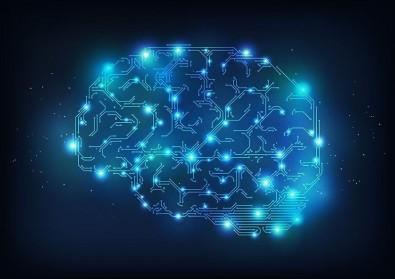 Pós-doutorado em Neuroanatomia com Bolsa da FAPESP
