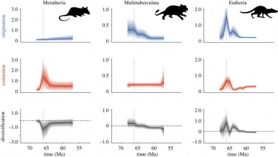 Mammalian diversification after extinction of the dinosaurs