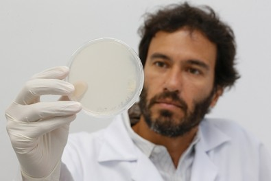 Científicos crean una nueva molécula para el tratamiento de la insuficiencia cardíaca