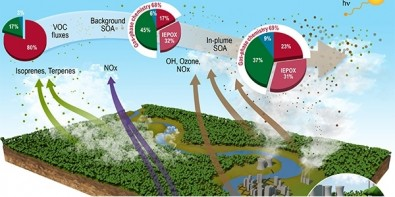 Pollution from Manaus results in up to 400% higher aerosol formation due to the Amazon Rainforest