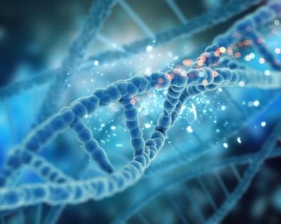 Pós-doutorado em genética do câncer gástrico com bolsa da FAPESP