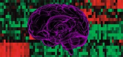 Crean nueva tecnología para la clasificación de los tumores cerebrales más comunes en niños