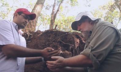 Pós-doutorado em ciência do solo na Esalq-USP com bolsa da FAPESP