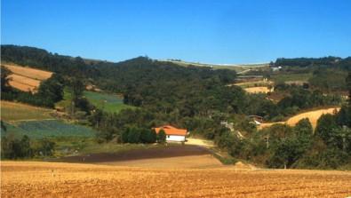 Manter vegetação nativa em propriedades rurais rende ao Brasil R$ 6 trilhões ao ano