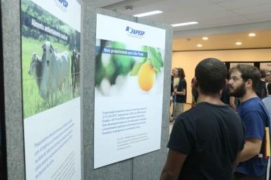 Torre ATTO e chip SAMPA são destaques em exposição da FAPESP