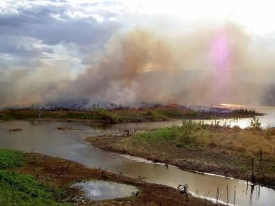 Carbono negro encontrado no rio Amazonas revela queimadas recentes na floresta