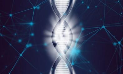 Treinamento técnico em genotipagem com bolsa da FAPESP