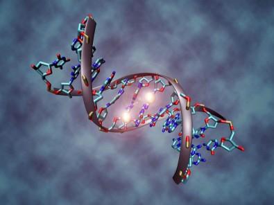 Doutorado direto em imunologia e epigenética na USP com bolsa da FAPESP
