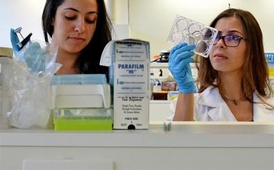 Pesquisa da Unicamp produz novo biomaterial para regeneração de ossos