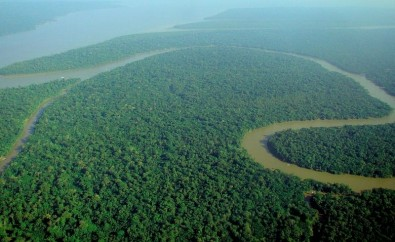 Science-based public policies are important to tackle an Amazon in transition