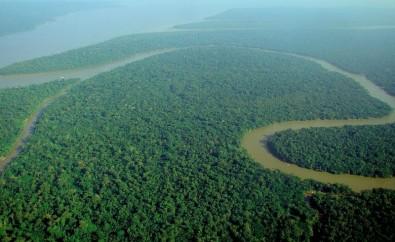 Las políticas públicas basadas en la ciencia son importantes para afrontar una Amazonia en transición