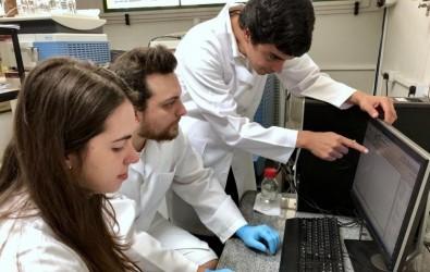El virus del Zika inhibe la proliferación de las células del cáncer de próstata