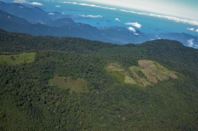 Desmate de fragmento da Mata Atlântica eleva temperatura local
