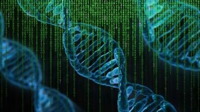 Treinamento técnico em TI aplicada à biologia computacional