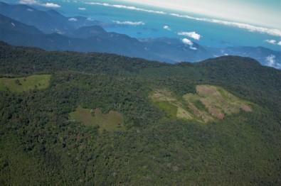 Destruction of an Atlantic Rainforest fragment raises the local temperature