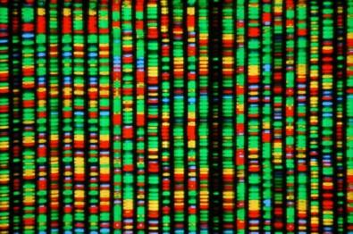 Centro de Estudos sobre o Genoma Humano adquire sequenciador genético de última geração