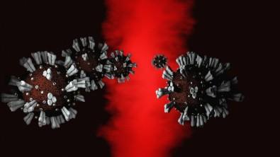 FAPESP financiará pesquisas para o combate ao coronavírus
