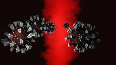 La FAPESP financiará investigaciones en el combate contra el coronavirus